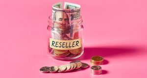 WHAT IS THE PURPOSE OF RESELLER HOSTING